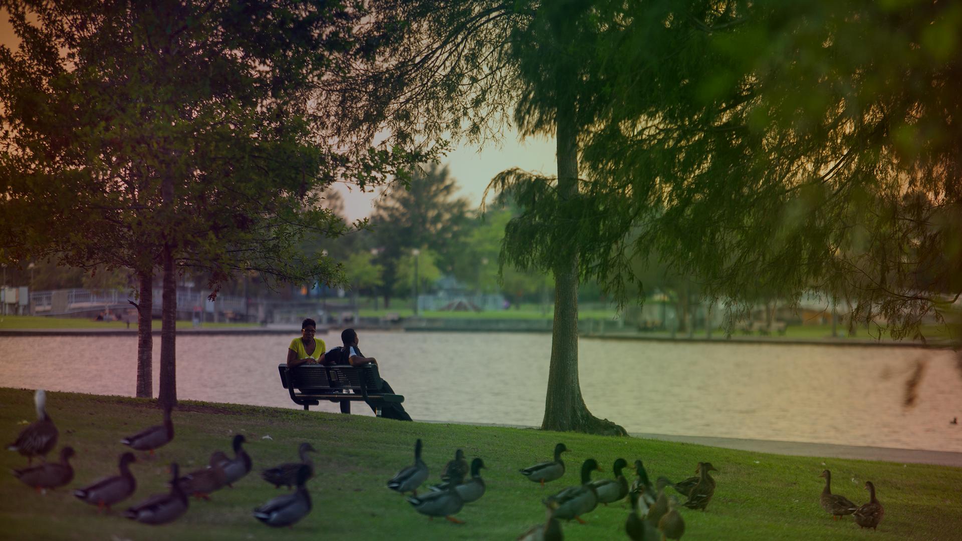 Lafrienere Park